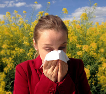 Allergies and Hearing